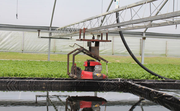 greenhouse clipping systems